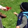 Child's Custody