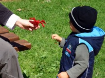 Tips To Help You Win Your Child's Custody