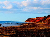 Travel To The Beautiful Beaches of Australia