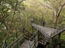 Tadoba Tiger Resort & Prospects of Ecotourism Business