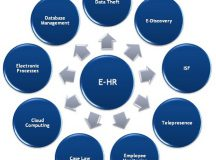 Learn About IT Support and its Relation to HR!