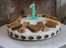 How to make a cake for a dog: Delicious recipes Fido will love