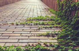 Pavers Make for Durable and Functional Driveways