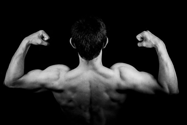 Best SARMs For Building Muscle and Shredding Fat!