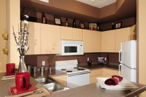 Hiring a Professional to Renovate your Kitchen